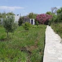 In den Gärten von LIvadi