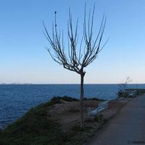 Küste im Schatten