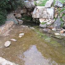Die Quelle von Nifi