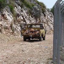 Steiniger Transport