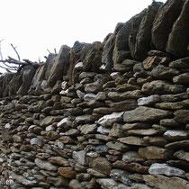 Kea: Trockenmauer
