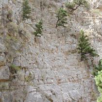 Kreta: Felsenwände in der Imbros-Schlucht