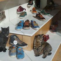Zu jedem Paar Schuhe eine Katze gratis