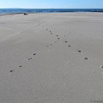 Deinen Spuren im Sand