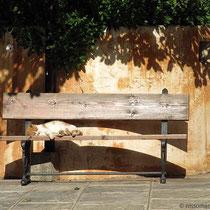 Leben wie eine Katze im kretischen Kloster