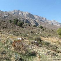Die zentrale Bergkette von Kalymnos