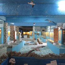 Meeresmuseum S. Valsamidis