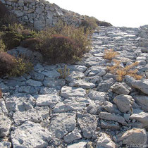 Der Pflasterweg