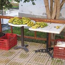 Die kretischen Bananen aus den Gewächshäusern des Südens