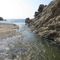 Flussmündung
