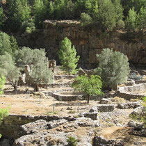 Die Ruinen von Samaria