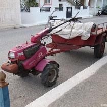 Kreta - Palekastro