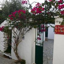 Bei Agios Spyridonas