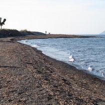Strand von Liés