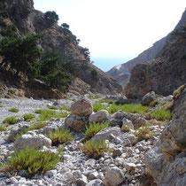 Kreta: In der Ilingas-Schlucht