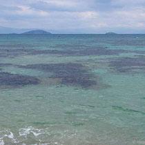 Ein Hauch Südsee