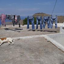 Muss die Wäsche hier bewacht werden?