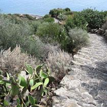 Noch mehr Treppen bei Tonna