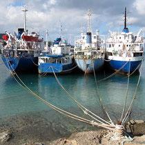 Schiffe an der Leine