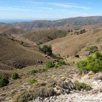 Kahler Landschaft bei Fyta