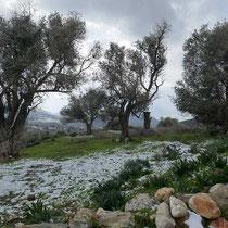 Winter auf Naxos