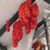 Tomatentrauben