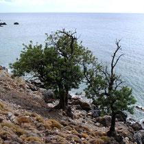 Kreta: Küste zwischen Agios Stavros und Loutro