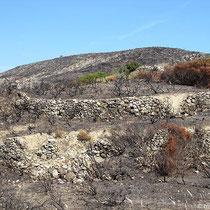 Der Hügel von Paleokastro