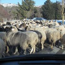 Straßenblockade