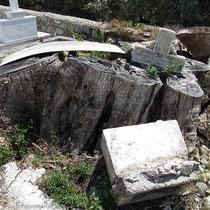 Ein Baumgrab, oder nur Grab für ein Kreuz?