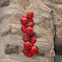 Hier trockenen Tomaten