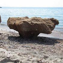 Steinpilz am Strand