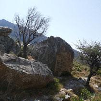... und Steine