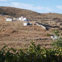 Blick über die Hügel