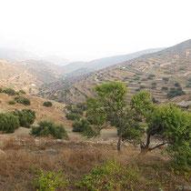 Blick ins Tal von Chora
