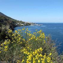 Blick nach Santa Marina