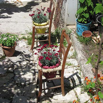 Blühende Stühle