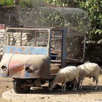 Kreta: Agia Roumeli - 2 Jahre später