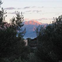 Blick zwischen den Bäumen durch auf die Berge jenseits der Mirabello-Bucht