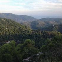Blick über die Wälder