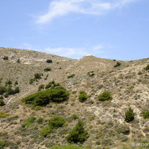 Karpathos: Blick zurück