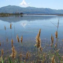 Die Lagune von Lingua