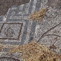 Mosaik auf der Agora