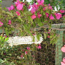 Blumenfreunde