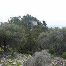 Blick auf den letzten Hügel mit dem Kastro ....