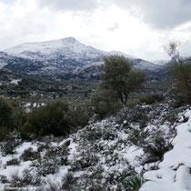 ... durch den Schnee