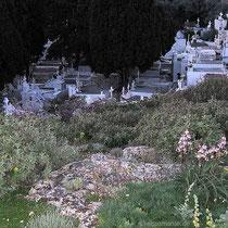 Friedhof