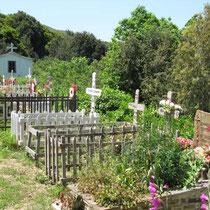 Friedhof der Gitterbettchen