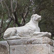 Löwenhund?