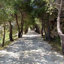 Der Weg nach der Kirche Agios Nikolaos